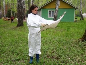 Более 940 га нижегородских парков, лесов и кладбищ обработают от клещей