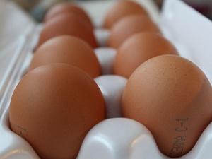 Нижегородстат зафиксировал снижение цен на яйца в регионе