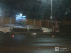 Легковушка насмерть сбила женщину на проспекте Гагарина