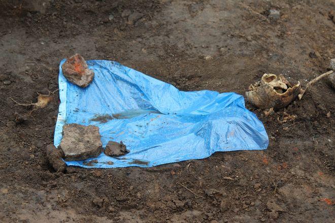Новые находки на старом кладбище: что обнаружили археологи в Нижегородском кремле - фото 18