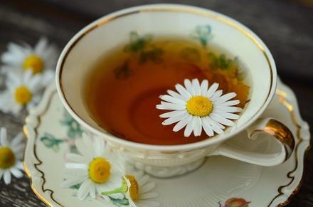 Кому нужно, а кому категорически нельзя пить чай с ромашкой в сезон простуд