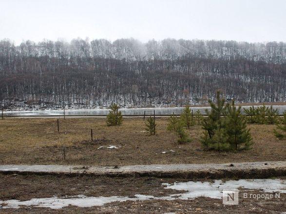 ТОП-5 мест, которые обязательно стоит посетить в Нижегородской области - фото 9