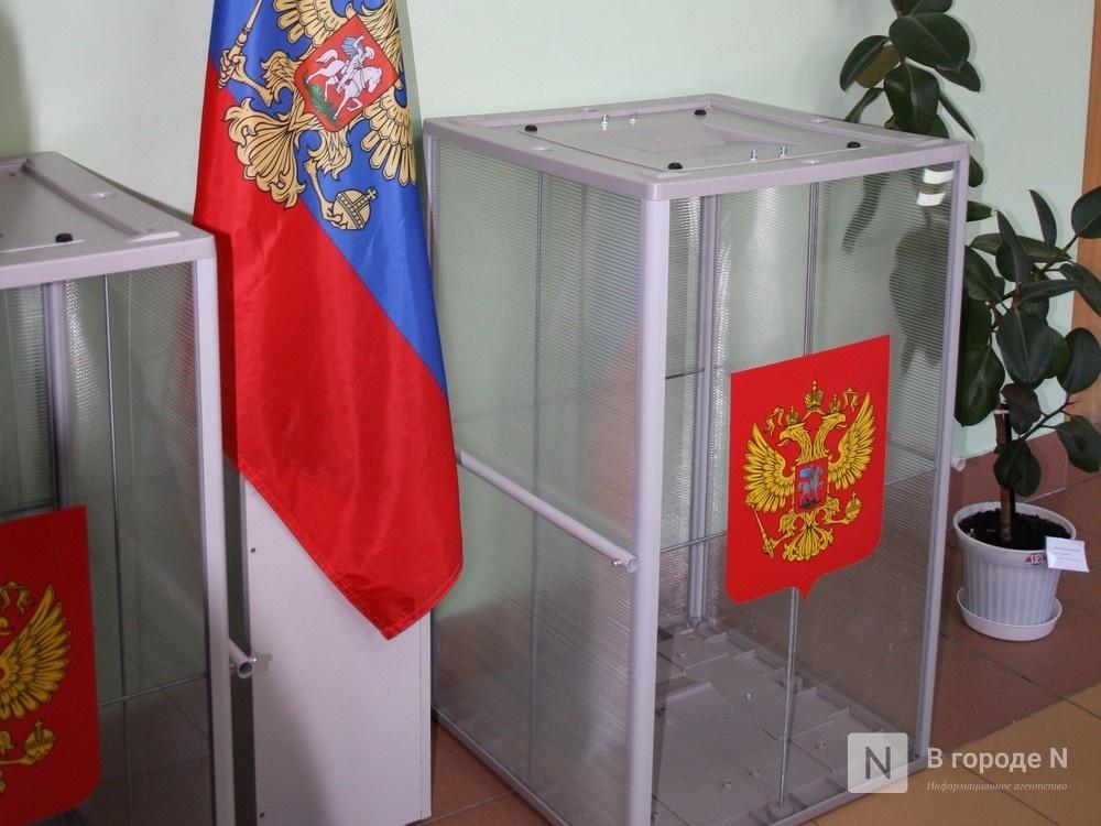 Явка на выборах достигла 28% в Нижегородской области  - фото 1