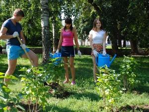 В лесопарках Нижнего Новгорода высадят 19 тысяч деревьев