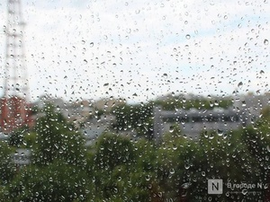 Потепление до +20°С и дожди принесет нижегородцам наступившая неделя