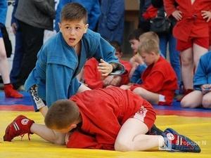 Нижегородская школа самбо получит участок под спортплощадку до конца 2020 года