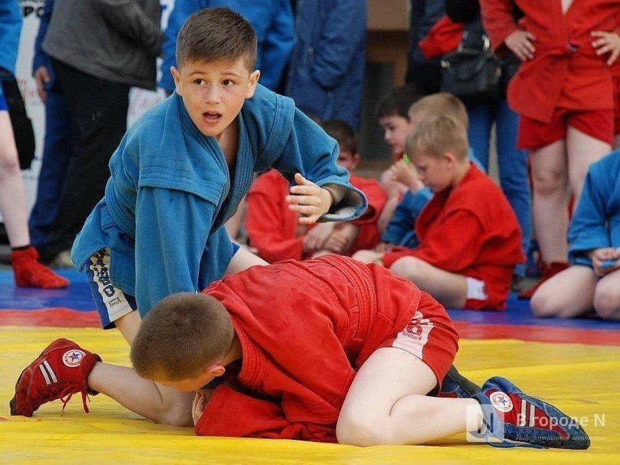Нижегородская школа самбо получит участок под спортплощадку до конца 2020 года - фото 1