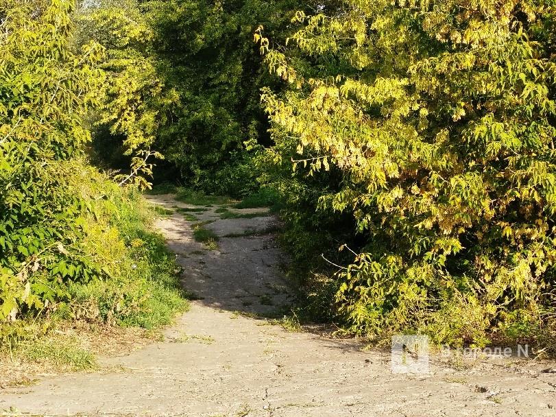 Благоустройство Лопатинского оврага планируется завершить в начале сентября - фото 3