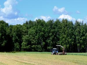 Нижегородские аграрии получили почти 2 млрд субсидий