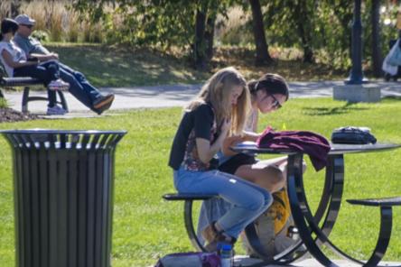 Площадки для пикника и дрессировки собак оборудуют в нижегородской «Швейцарии»