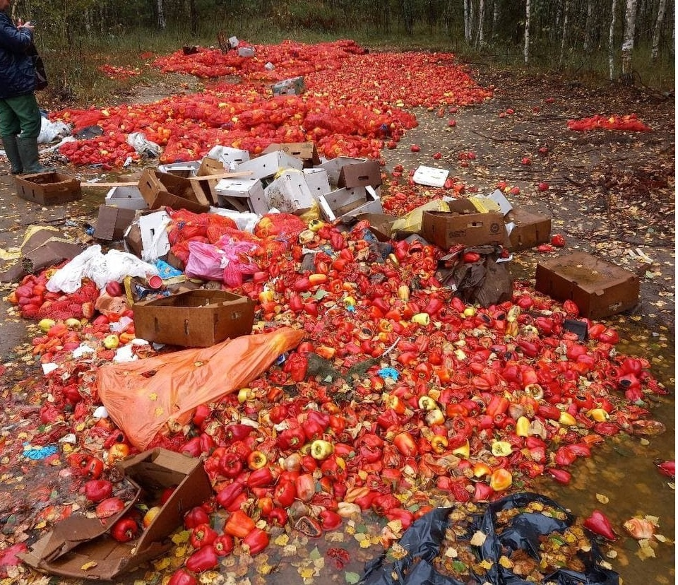 Огромную свалку перца обнаружили на дороге в Ковернинском районе - фото 1