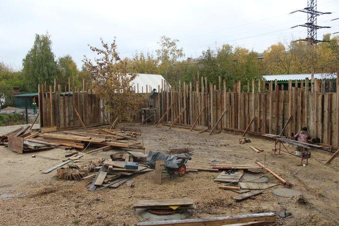 Одноглазая медведица из нижегородского зоопарка «Мишутка» переедет в «Лимпопо» - фото 2