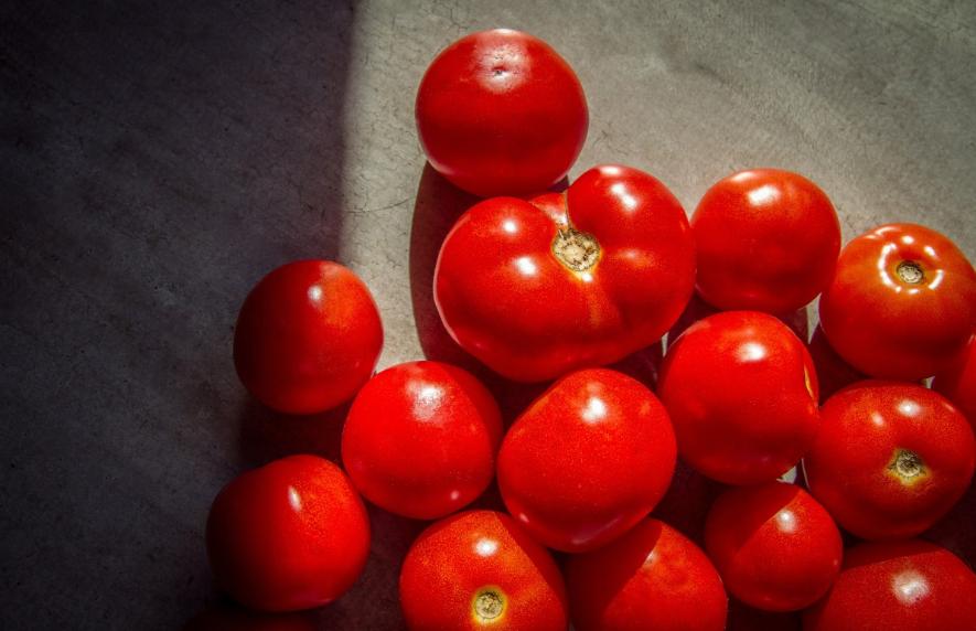 В Росконтроле назвали марки опасного для здоровья кетчупа - фото 3