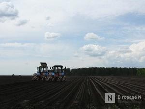 850 млн рублей субсидий получили нижегородские аграрии