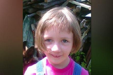 Назначено вознаграждение за информацию о пропавшей в Богородске Маше Люлиной
